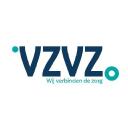 Vzvz logo icon