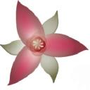 Wake Robin Company Logo