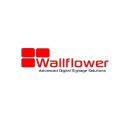 Wallflower Network