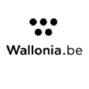 Wallonia logo icon