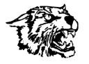 Wayland Union School