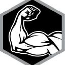 Bsm Technologies Inc logo icon
