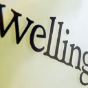 Wellington Partners logo icon