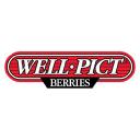 Wellpict logo icon