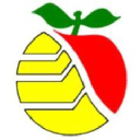 Wenatchee, Wa logo icon