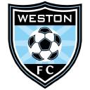 Weston Fc logo icon