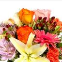 Westport Floral Designs logo