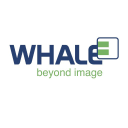 Whale Imaging logo icon