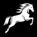White Horse Capital logo icon