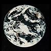 Whole Earth logo icon