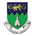 Wicklow logo icon
