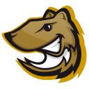 Wiizl logo icon