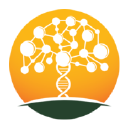Wiki Tree logo icon