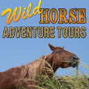 Wild Horse Adventure Tours LLC logo