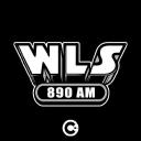 Wls logo icon