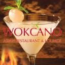 Wokcano logo icon