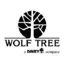 Wolf Tree Experts