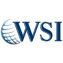 Wsi Consultoria logo icon