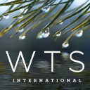 WTS International Company Logo