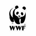 Wwf logo icon