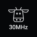 30MHz Logo