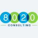 8020 Consulting Logo