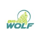 Big Wolf Marketing Ltd logo