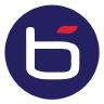Bluechip Infotech logo