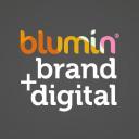Blumin Limited logo