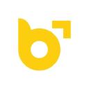 Brandvertise, Inc logo