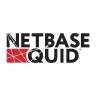 NetBase Solutions logo