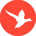 Web Design & Digital Marketing Agency in Exeter | Optix Solutions