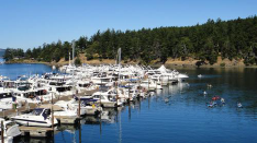 Aviation job opportunities with Roche Harbor Airport Wa09