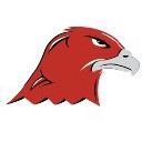 StorageHawk logo