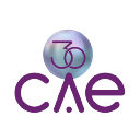 CAE Technology Services Logo