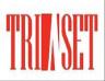 TriAset logo