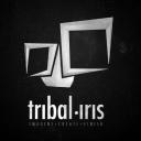 Tribal Iris logo