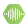 Voice Metrics logo