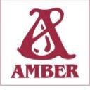 Wydawnictwo Amber logo icon