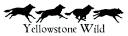 Yellowstone Wild Tours logo