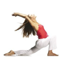 yoga-vidya.de logo icon