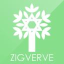 Zigverve logo icon